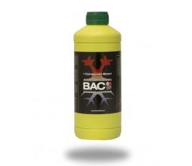 BAC - 1 Component Bloom