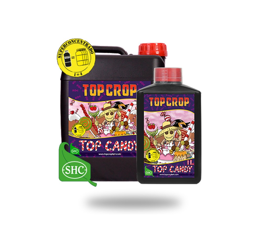 TOP CROP TOP CANDY