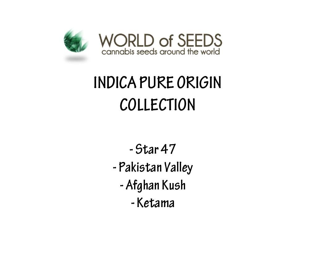 INDICA PURE ORIGIN COLLECTION