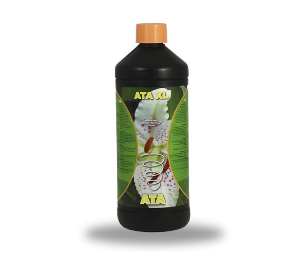 ATAMI ATA XL
