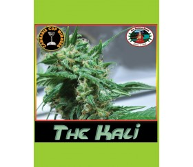 THE KALI