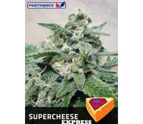 SUPERCHEESE EXPRESS