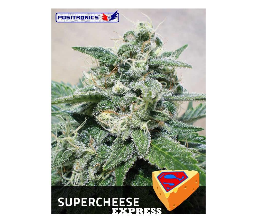SUPERCHEESE EXPRESS