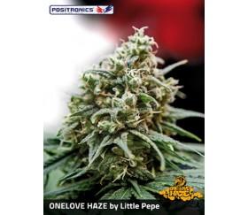 ONE LOVE HAZE