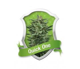 QUICK ONE