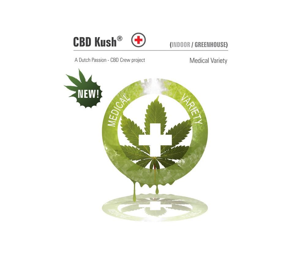 CBD KUSH