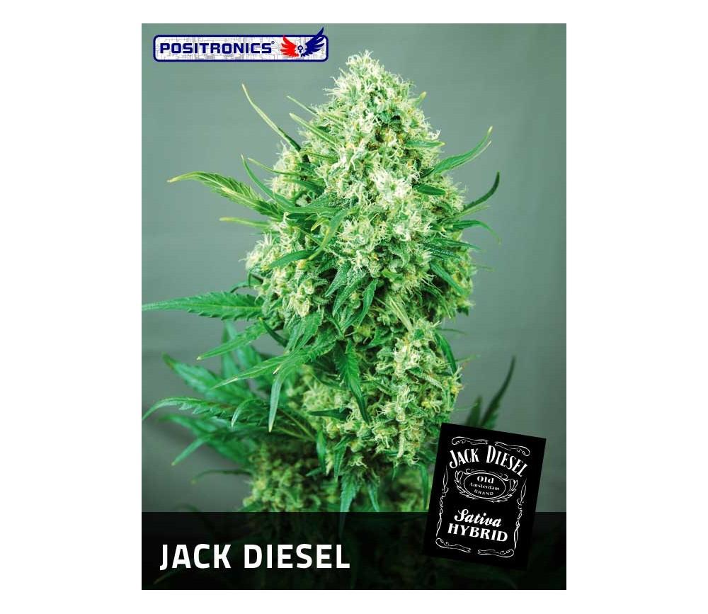 JACK DIESEL