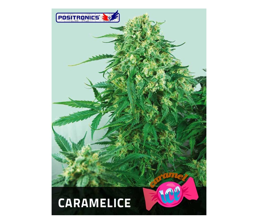 CARAMELICE