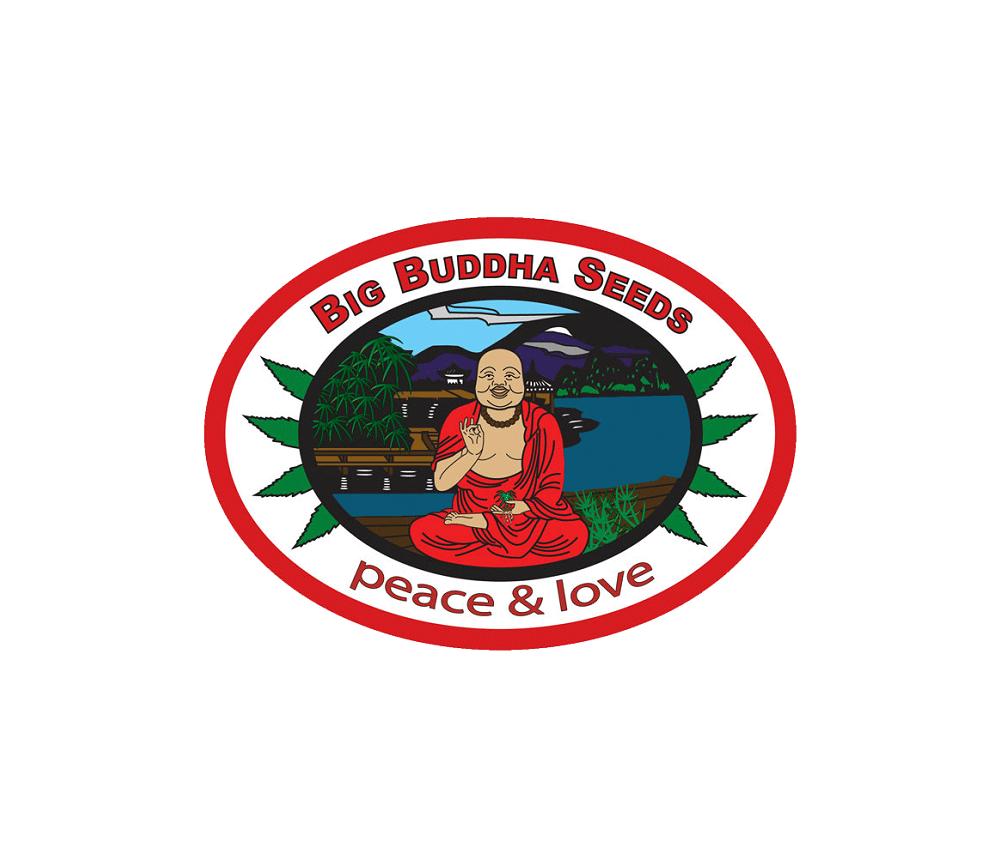 Cherry Moon Pie - Big Buddha Seeds