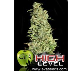 High Level Eva Seeds