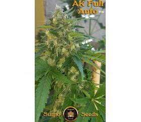 AK Full Auto - Sumo Seeds