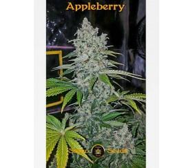 Appleberry - Sumo Seeds