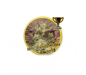 Mr Jekyll Kush - Mr Hide Seeds