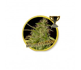 Mr. Weed Mass - Mr. Hide Seeds