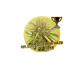 Mr. Sugar Lemon Haze - Mr. Hide Seeds