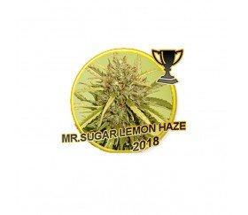 Mr. Sugar Lemon Haze - Mr. Hide Seeds