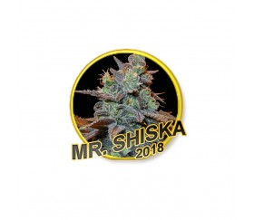 Mr. Shiska - Mr. Hide Seeds