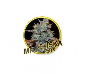 Mr. Shiska - Mr. Hide Seeds