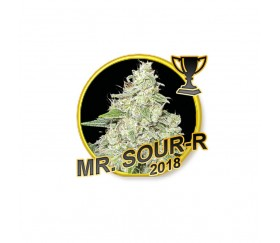 Mr. Sour-R - Mr. Hide Seeds