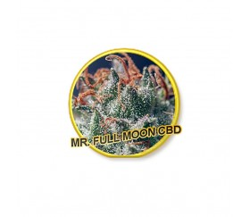 Mr. Full Moon CBD - Mr. Hide Seeds