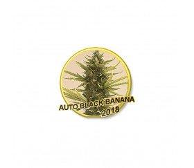 Auto Black Banana - Mr. Hide Seeds