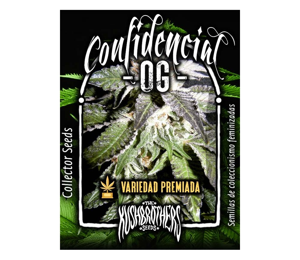 Confidencial OG - The Kush Brothers