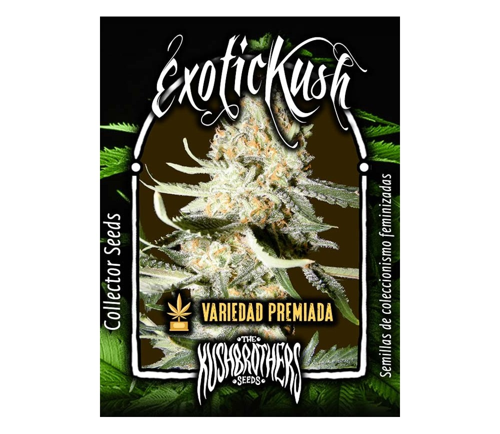 Exotic Kush - The Kush Brothers