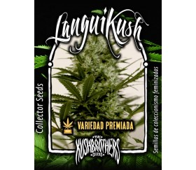 Langui Kush - The Kush Brothers