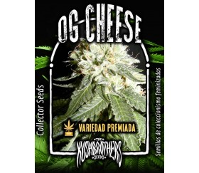 OG Cheese - The Kush Brothers