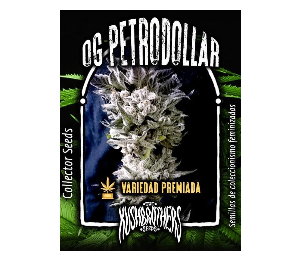 Petrodollar - The Kush Brothers