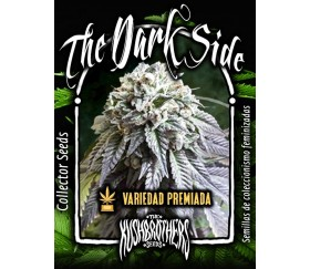 The Dark Side - The Kush Brothers