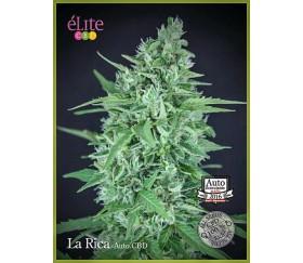 La Rica Auto CBD - Élite Seeds