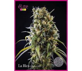 La Rica Clásica CBD - Élite Seeds