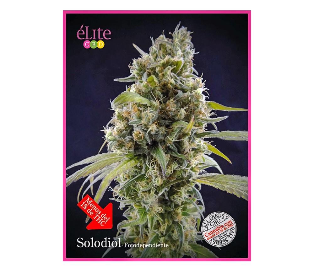 Solodiol - Élite Seeds