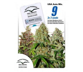 USA Autoflower Mix - Dutch Passion Seeds