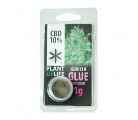 CBD Hash Gorilla Glue de Plant of Life