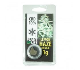 CBD HASH LEMON HAZE 1G CBD 10%