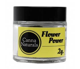 Flores CBD Flower Power