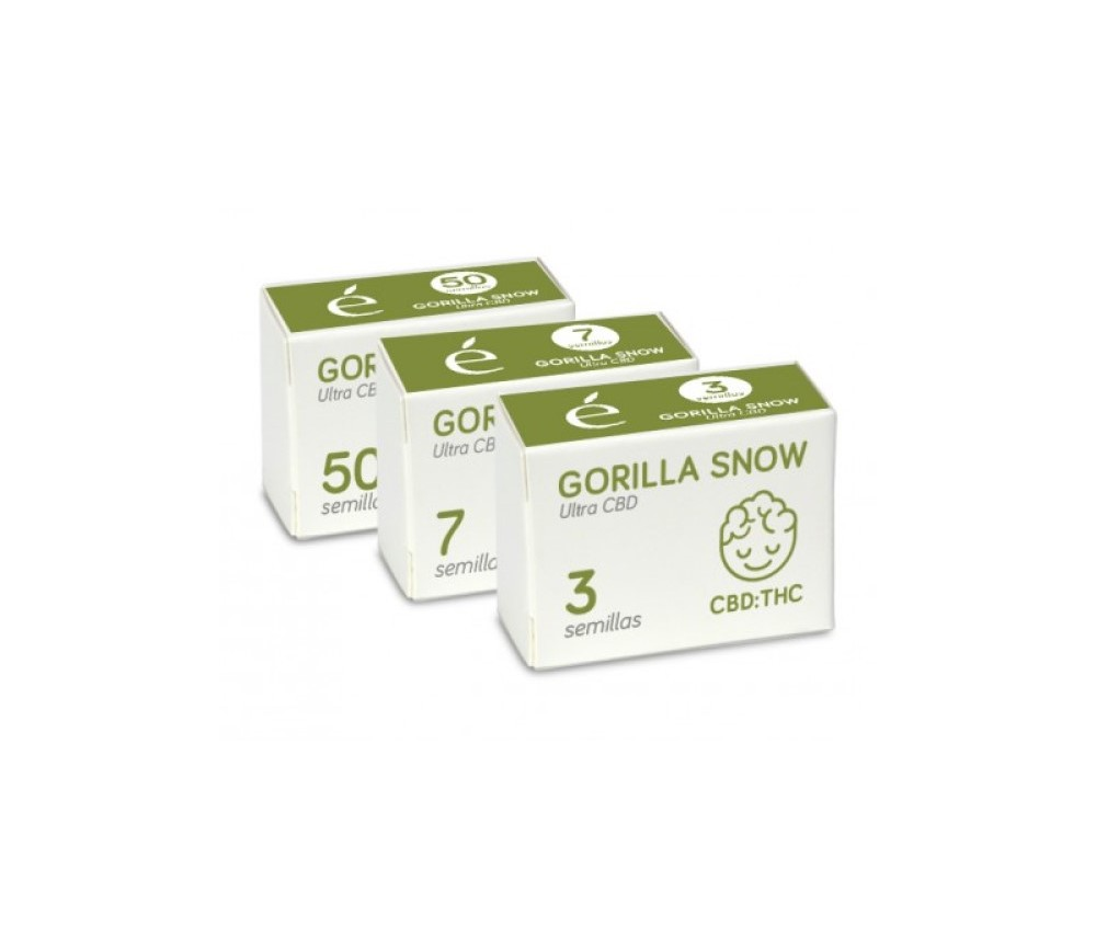 Gorilla Snow Ultra CBD - Elite Seeds