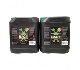 Pack BAC Orgánico Básico Big Growers