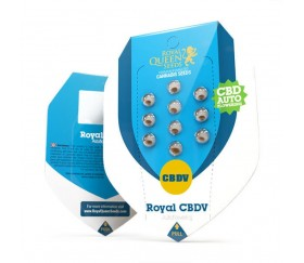 Royal CBDV Automatic - Royal Queen Seeds
