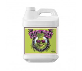 Big Bud de Advanced Nutrients 10L