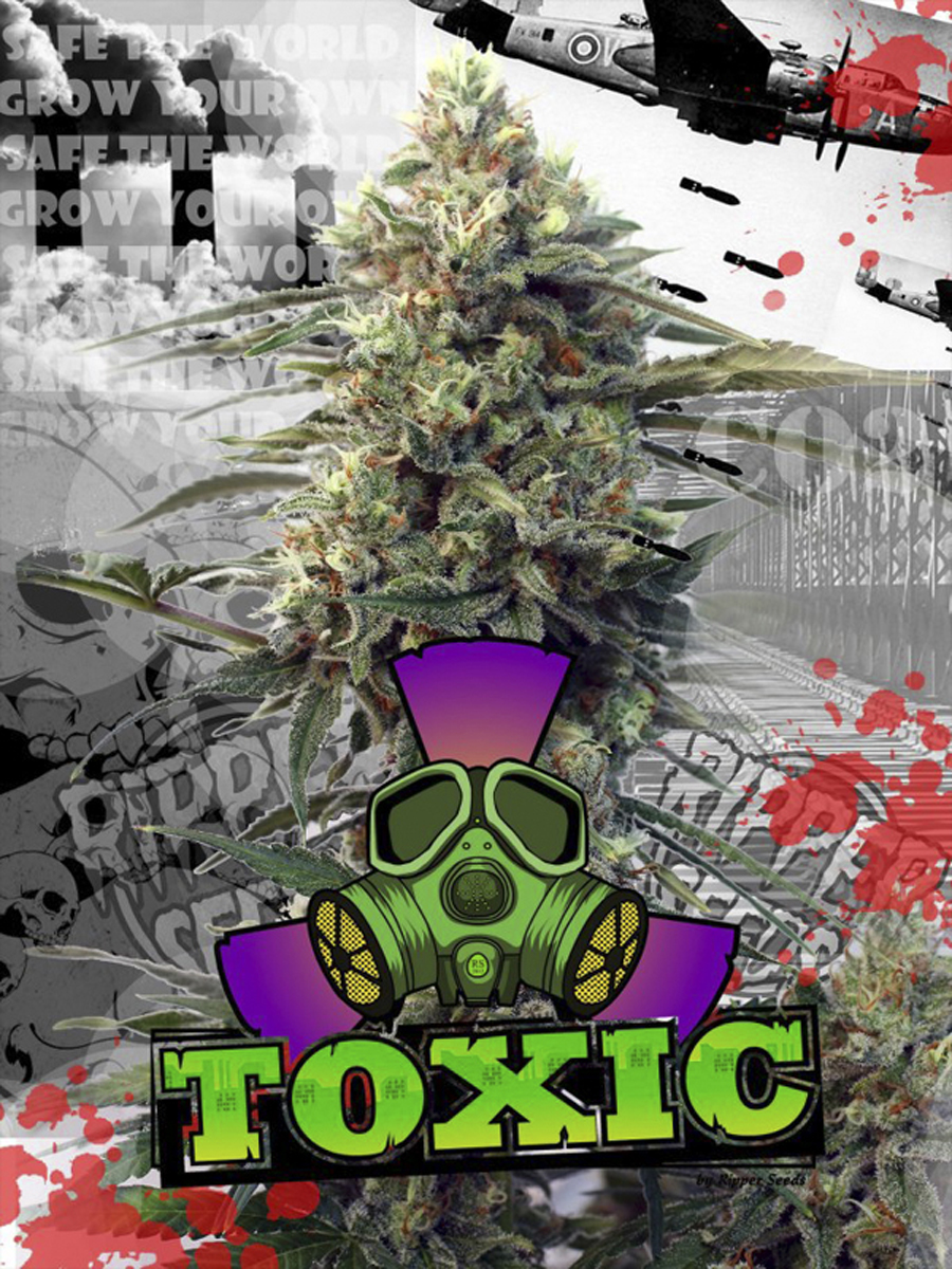 Toxic, Ripper Seeds