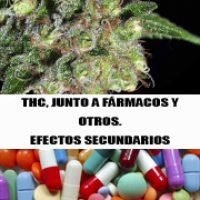 THC Y FARMACOS