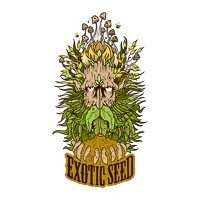 Exotic Seed