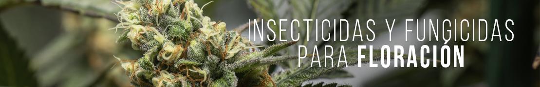 Insecticidas para marihuana en floración