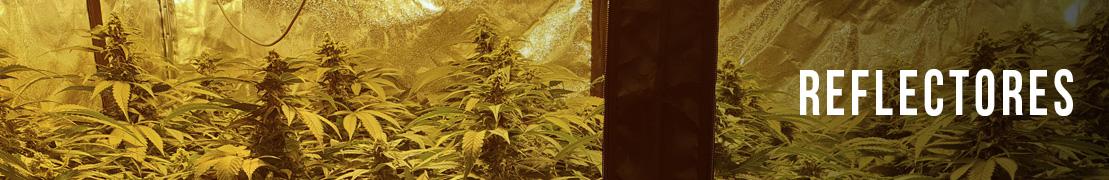 Reflectores para marihuana