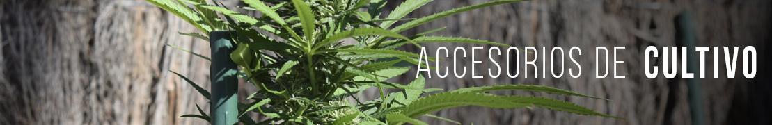 Accesorios cultivo cannabis